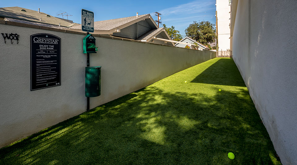 Apartments for Rent in Glendale - ONYX Glendale Fenced-in Outdoor Dog Park with Grass Turf